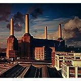 Animals (2016 Version) (Vinyl)