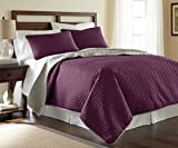 Amrapur Overseas Leaf 3-Piece Reversible Coverlet Set (Vintage Violet/Silver, King)