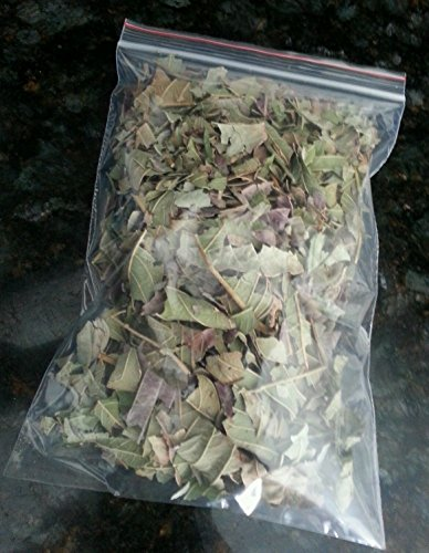 1.0 oz Crushed Dried Guava Leaves Tea from ORGANICALLY Grown Guava Trees in Southern California by Tang Store No Pesticides or Insecticides (Tangs Store)