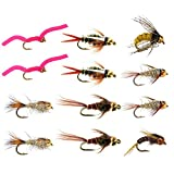 Go-to Trout Fly Fishing Nymph Assortment - 12 Flies