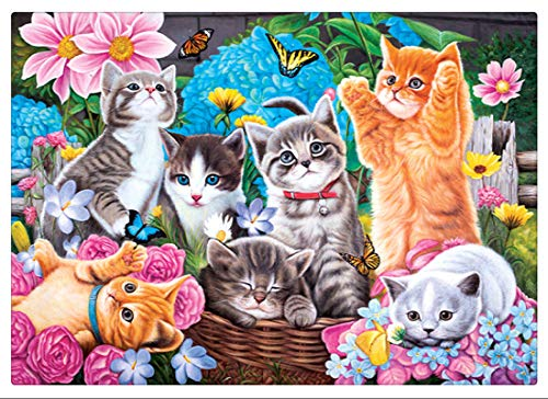 - KoKoWill DIY 5D Diamond Painting Kit, Full Drill Round Crystal Rhinestone Embroidery Cross Stitch Home Wall Décor Arts Craft Canvas,Cute Kitten Cats,15.75 x 11.81 inch
