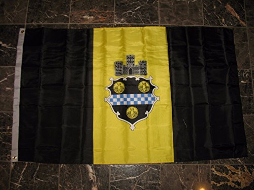ALBATROS 3 ft x 5 ft City of Pittsburgh Double Sided 2ply Sewn Nylon Flag Banner for Home and Parades, Official Party, All Weather Indoors -
