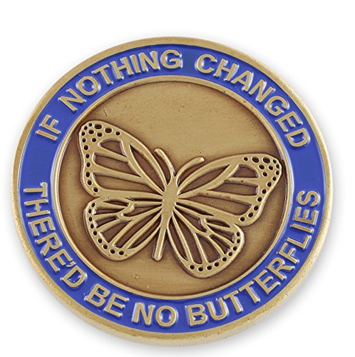 Religious Charm Pin (If Nothing Changed There'd Be No Butterflies x Serenity Prayer Gold/Silver Enamel Recovery Coins (Gold Tone (1 Coin)))