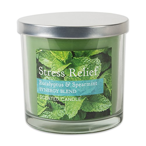 Home Traditions 3-Wick Evenly Burning Highly Scented 4x4 Large Jar Candle with 45+ Hour Burn Time (14.5 Oz) - Eucalyptus and Spearmint Scent