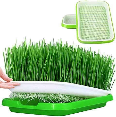 Seed Sprouter Tray 2 Set Two-Tiered Seed Sprouter Tray Kitchen Crop Sprouter Plant Germination Tray Hydroponics Basket for Seedling Planting Garden Home and Office