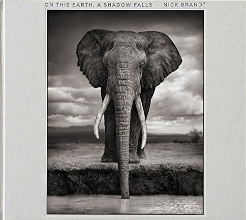 Nick Brandt: On This Earth, A Shadow (Earth Shadow)