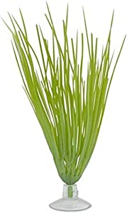 Marina Plastic Hairgrass