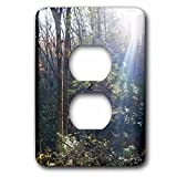 3dRose WhiteOaks Photography and Artwork - Nature Scene - Sunbeams at WarWoman is a photo of sunbeams shining through trees - Light Switch Covers - 2 plug outlet cover (lsp_265353_6)