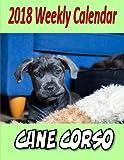 2018 Weekly Calendar Cane Corso