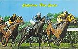 Hollywood, FL, USA Gulf Stream Race Course Horse Racing Postcard unused