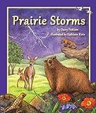 Prairie Storms, Darcy Pattison, 1607181398