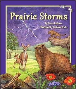 Prairie Storms por Darcy Pattison epub