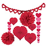 Amscan Blushing Valentine's Day Paper Party Decorating Kit (Pack of 9), Red, One Size