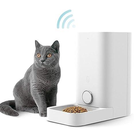 Amazon.com: PETKIT Comedero automático para mascotas, para ...