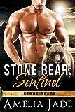 Free eBook - Stone Bear