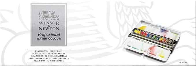 Winsor & Newton Caja metálica esmaltada Resistente 12 Medio Godets ...