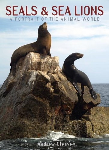 Seals & Sea Lions (A Portrait of the Animal World)