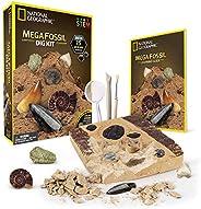 NATIONAL GEOGRAPHIC Mega Fossil Dig Kit – Excavate 15 Real Fossils Including Dinosaur Bones & Shark Teeth,