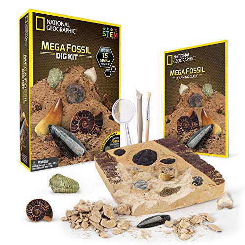 NATIONAL GEOGRAPHIC Mega Fossil Dig Kit - Excavate 15 real fossils including Dinosaur Bones, Mosasaur & Shark Teeth - Great STEM Science gift for Paleontology and Archeology enthusiasts of any age