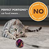 NUTRO Grain Free Natural Soft Wet Cat Food Cuts in