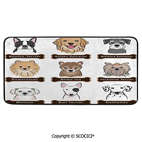 Print Door Mat, Indoor Floor Area Carpet Compatible Bedroom,Living Room,Children, Playroom, Bathroom,Dog Lover Decor,Various Type of Dogs Nameplate Boston Terrier,39