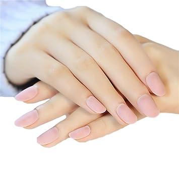 Amazon Com Jindin 24 Sheet Matte Short Oval Fake Nails Beauty