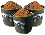 Dirt Bag Grow Bags, 4 Gallon Fabric Container (Pack of 3, Black Green Trim) For Sale