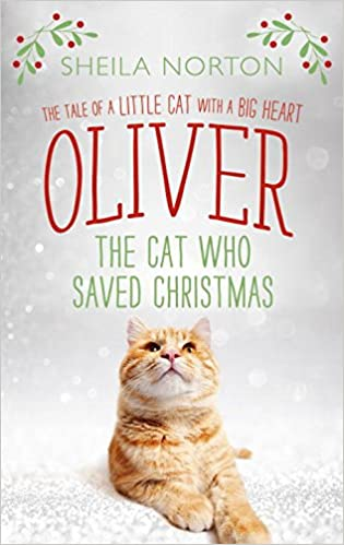 Image result for oliver the cat who saved christmas