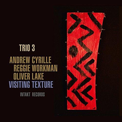 Trio 3-Visiting Texture-(IntaktCD282)-PROMO-CD-FLAC-2017-HOUND Download