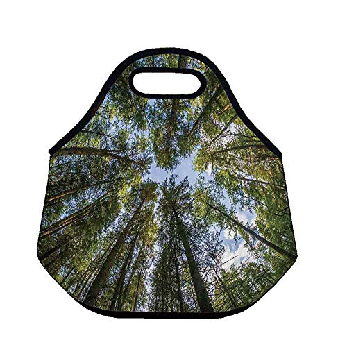 Nature Large Capacity Neoprene Lunch Bag,Wild Jungle Moss Forest Crown Trees Leaves Nature Photo Artwork Print for Adults Men Women Nurses,Throw(11.8''L x 6.3''W x 11''H)
