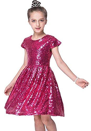 ZaH Girls Flower Flower Sequin Princess Tutu Tulle Birthday Party Dress (Hot (Taffeta Tutu)