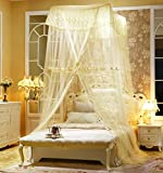Fine,Princess Wind Dome Ceiling Mosquito Nets/Simple,Fashion Double Home,Ceiling Mosquito Net/European Court To Increase The Mosquito Bed-C C