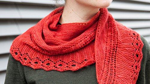 Knit a Lace Shawl ()