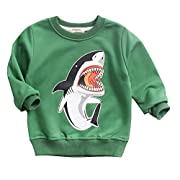 HUAER& Boys Girls Cartoon Shark Print Sweater Spring & Autumn Tops (18 Months -2T (height 80-90 cm/31-35 Inch), Green)