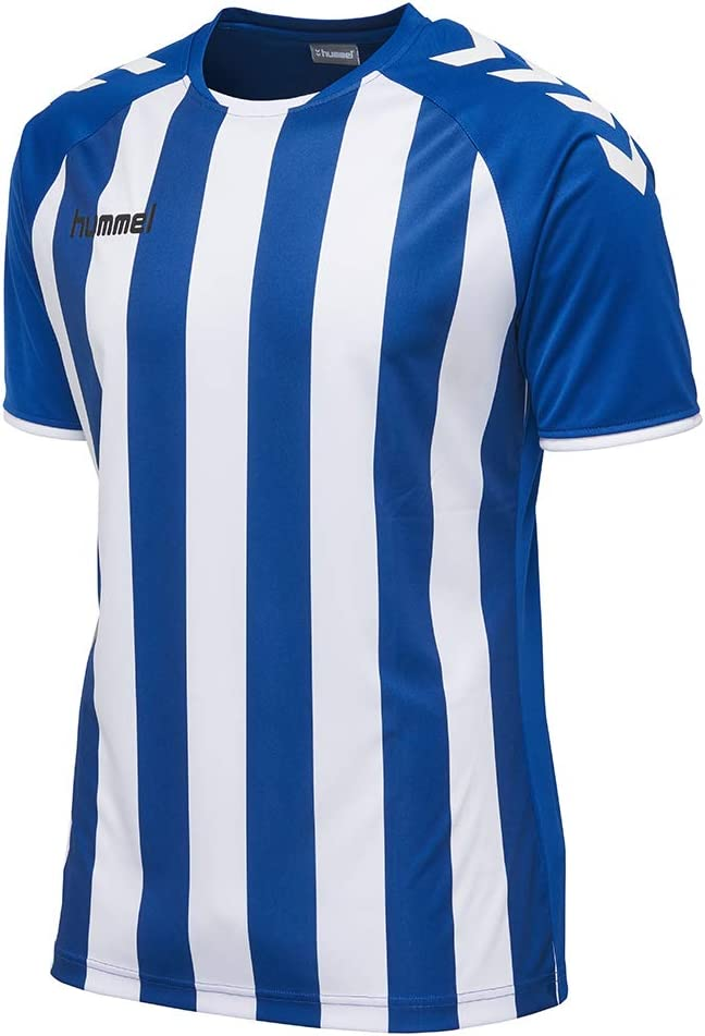 Homme Maillot hummel Core Striped SS Jersey