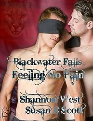 Feeling No Pain (Blackwater Falls Book 4)