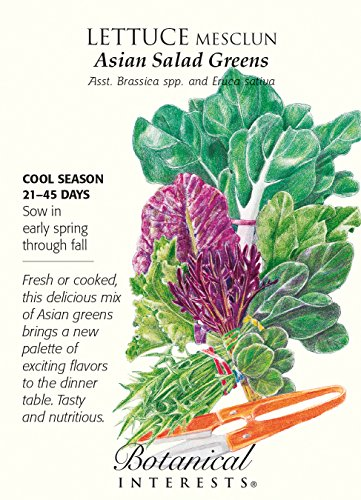 Lettuce Mesclun