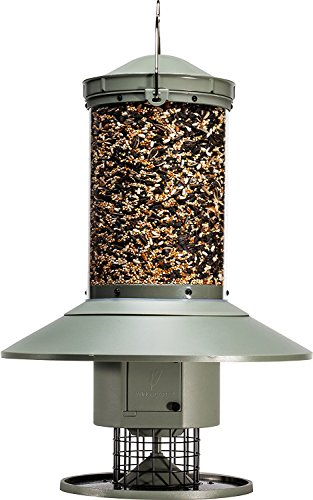 electronic bird feeder - 2