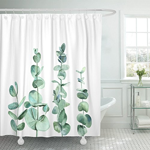 (Emvency Waterproof Shower Curtain Curtains Colorful Leaf Eucalyptus Branches Watercolor on White Green Branch Greenery Pastel 60