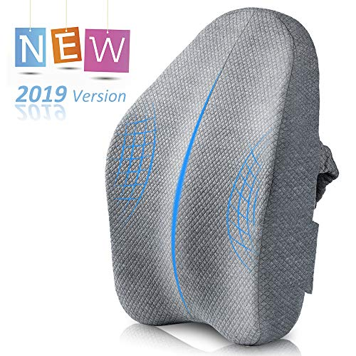 Villsure Lumbar Support Pillow, Bamboo Charcoal Fiber Ergonomic Design Back Cushion for Low Back Pain Relief with Adjustable Elastic Straps, Orthopedic Backrest for Office Chair, Car Seat, Wheelchair (Best Office Chair With Adjustable Lumbar Support)