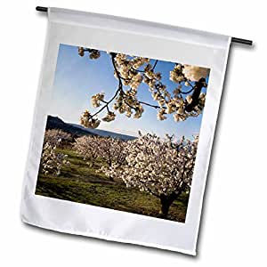 Danita Delimont - France - Cherry blossoms, Luberon, Vaucluse, Provence, France - EU09 DBN0778 - David Barnes - 12 x 18 inch Garden Flag (fl_81479_1)