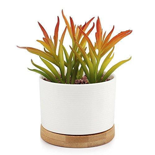 Digsky Small Round Modern White Ceramic Succulent Plant Pot Bamboo Draining Tray 3 x 2 x 3 - 3 White Inch Ceramic