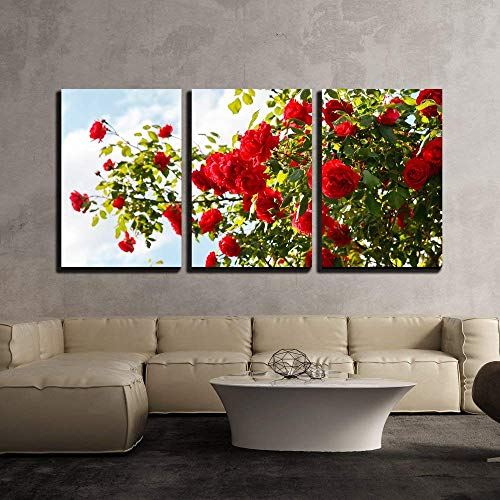 KAROLA 3 Piece Canvas Wall Art for Living Room Modern Home Wall Decoration Stretched and Framed Ready to Hang Red Roses Bush in The Garden 24
