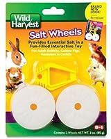United Pet Group H1389 Salt Wheel Pet Treat, Set of 2