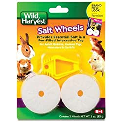 United Pet Group H1389 Salt Wheel Pet Treat, Set of 2