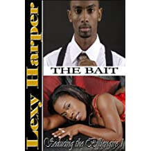 The Bait (Seducing the Billionaire Book 1) (English Edition)