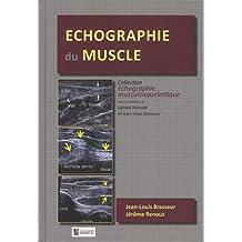 Échographie du Muscle