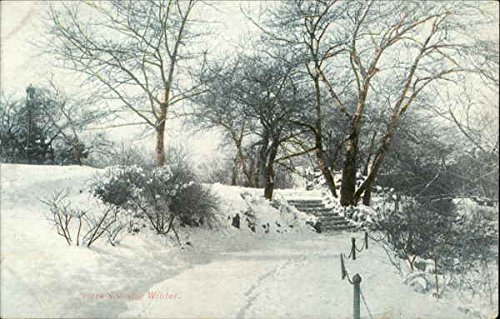 (Vintage Advertising Postcard: Park Path in Winter Snow - Quadrotone Post Card Advertising)