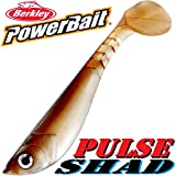 Berkley, Power Bait Pulse Shad, set da 5x pesci in gomma, da 6 cm, aromatizzati