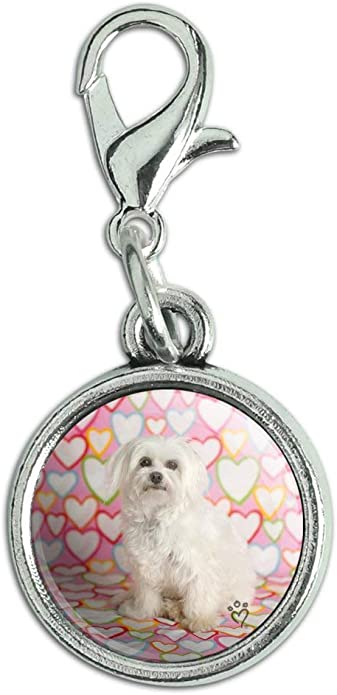 Dog Lhasa Apso Charm With Lobster Claw Clasp Charms for Bracelets and Necklaces